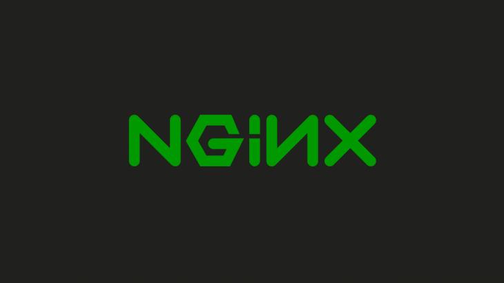 disable nginx cache